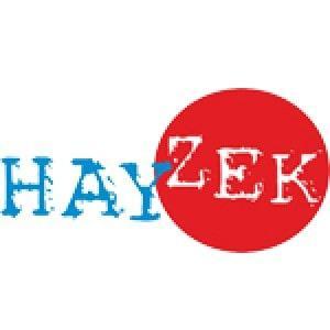 Hayzek